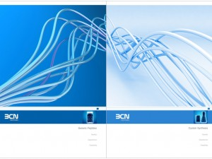 BCN Peptides Identity